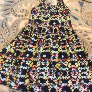 Multicolor cotton skater dress